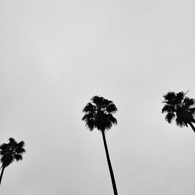 California Love. #iheartLA